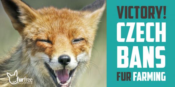 Breaking: Czech fur farming ban OFFICIAL!